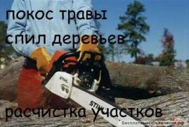 Cleaning clearing land ,territory ,garbage removal,saw cut Odessa