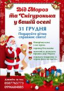 Congratulation of father Frost and snow Maiden on the house